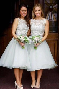 A-line Mini Sleeveless Lace Organza Dress with Bateau Neck