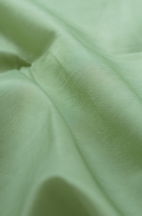 Taffeta Fabric Sample